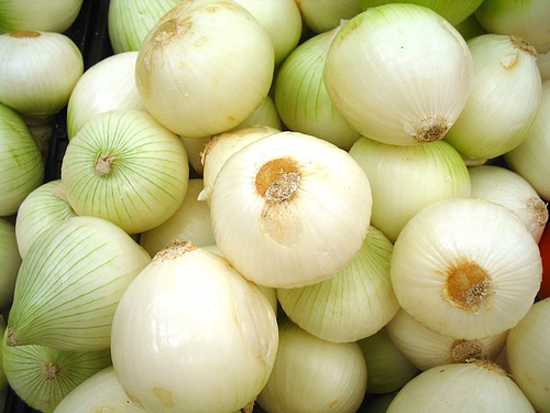 cebollas-1