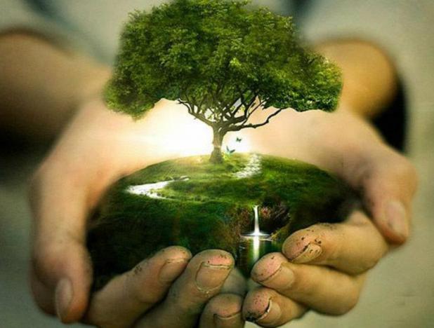 Día-Mudial-de-la-Naturaleza