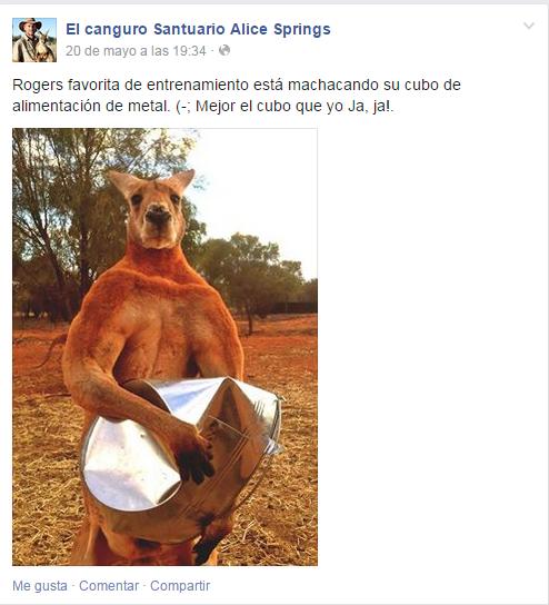 roger el canguro (1)