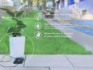 La energía de las plantas para cargar tu celular