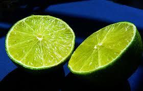 mosquitos vs limon