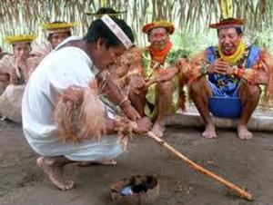 ayahuasca-indigenas