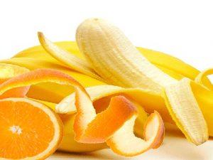 conchas-de-frutas