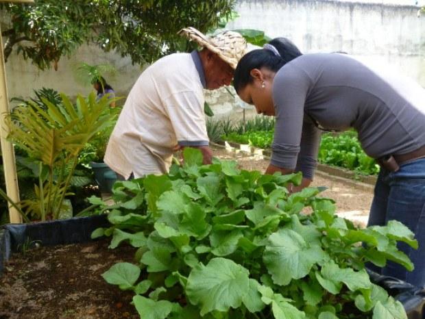 agricultura-agenda-economica-bolivariana