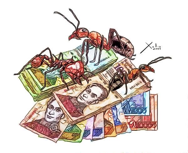 bachaqueo-de-billetes